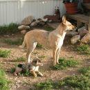 Tana &  friend from Wyoming