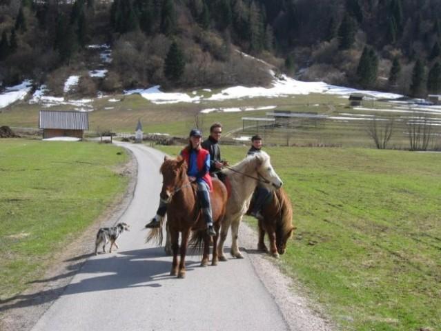 BOHINJ: After ski activities in April - riding Icelandic horses