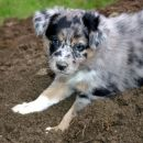 Digging is great!!!!
