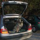 Nazaj grem pa z avtom, ker je Branka že malce utrujena.