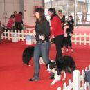 razstava v ljubljani 2008
