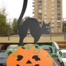 Črna mačka in buča - dekoracija na oknu, ta sicer iz papirja