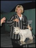 Terrier show Ruma 2008. Žoli-PRM.