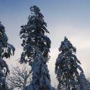 Prvič sneg zima 06/07(konec januarja 07)