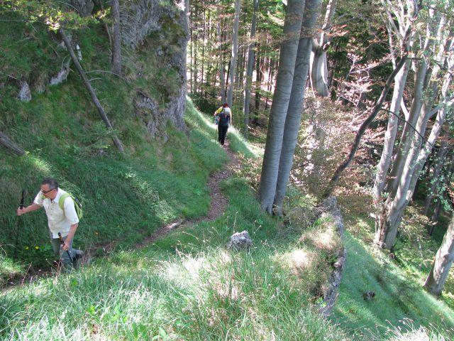 Rečiška pot 2.del s Kala do Laškega 28.5.2016 - foto