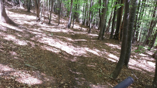 Kolesarjenje Ruše Areh  - dol trail - foto
