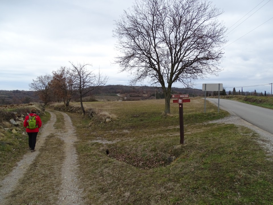 Šavrinsko hribovje 10-2.2019 - foto povečava