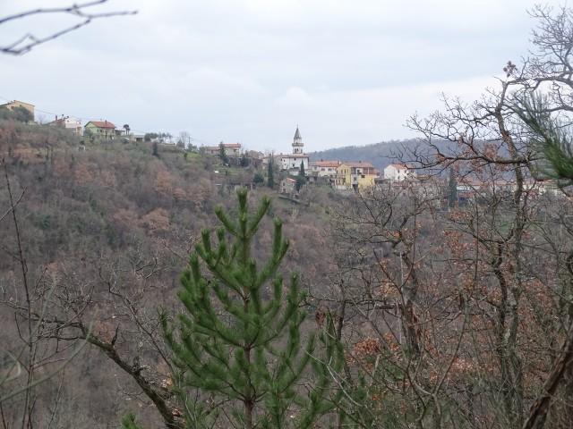 Šavrinsko hribovje 10-2.2019 - foto