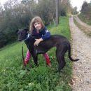 Lurcherka Ruby; 2.10.2014