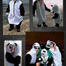 pustni kostum panda