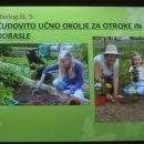 Irena Kurajič: Sedem razlogov za ekološki vrt