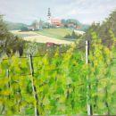 vinograd Stara Gora