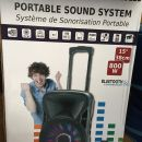 Aktivni zvočnik Party portable sound 800 W