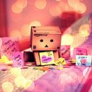 Danbo and Me