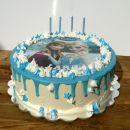 Torta Ledeno kraljestvo