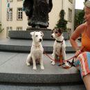 Spomin na Luxemburg
