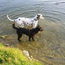Johny & Žiža čakata Belo , da pride iz vode