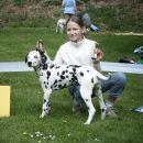 best puppy (3-6m)