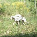 obisk pri Johnyju september2006