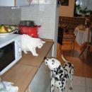 Lola & Very