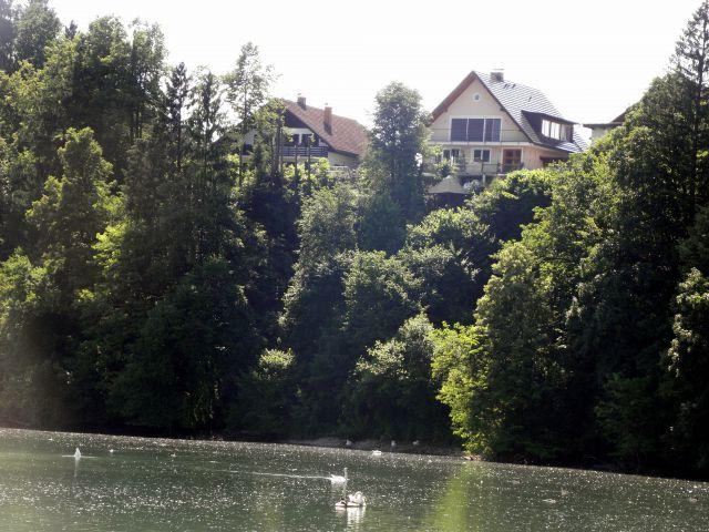 13. junij 2009 - Ljubljana-Zbiljsko jezero - foto
