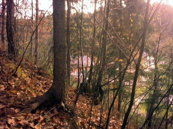 Golovec in okolica - foto