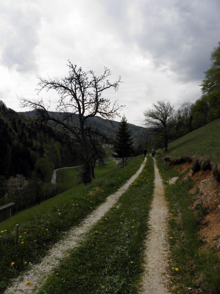 27. april 2010 - Tuhinjska dolina - foto povečava