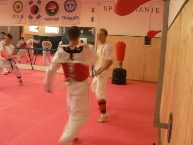 Taekwondo - trening borbe - foto