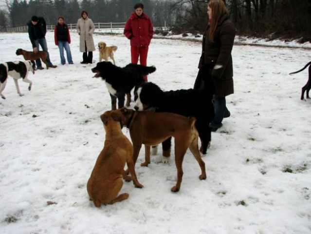 17. december 2005 - foto