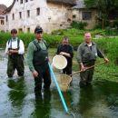 Izlov Hribskega potoka in vlaganje v Ljubljanico in Bistro (1)