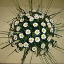 70 cvetov