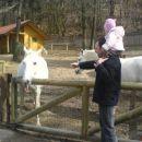 Nina v živalskem vrtu