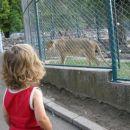 v živalskem vrtu