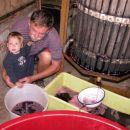 Z dedijem pa stiskava grozdje.