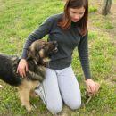 mali in veliki pes