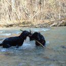 Akcija v vodi