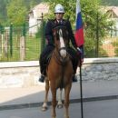 Parada ob 120-letnici gasilstva v Borovnici
