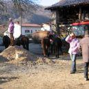 Žegenj konj 2007