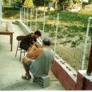 Pritrjevanje ograje
