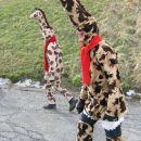 Od kje so pa žirafe prlezle na Livek?