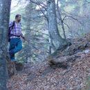 Kljucni mozic pri gozdni meji, da se najde PP.