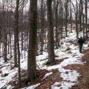 Pot je speljana po širnih bukovih gozdovih