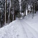 Od letos dalje se bo zima pričenjala sredi marca