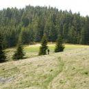 Prečenje travnikov proti Krnesu