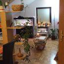 Pogled iz kuhinje proti dnevni sobi