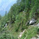 Zgornja pot