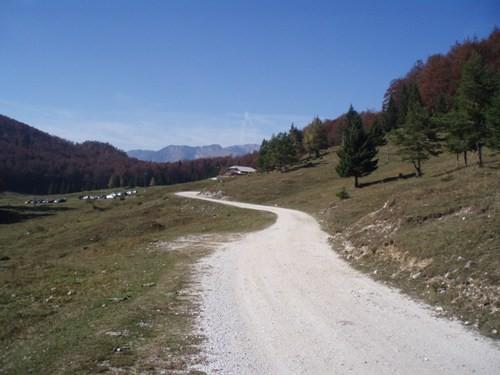 KISOVEC - foto