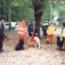 Reševalni tabor-Tolmin