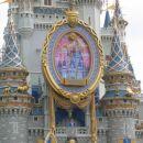 Pepelkin grad, Magic Kingdom