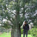 Jaz v parku Auckland Domain ob čudnem drevesu.